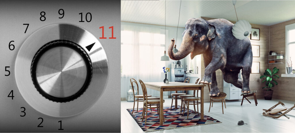Eleven; and the elephant by Jessie At Home