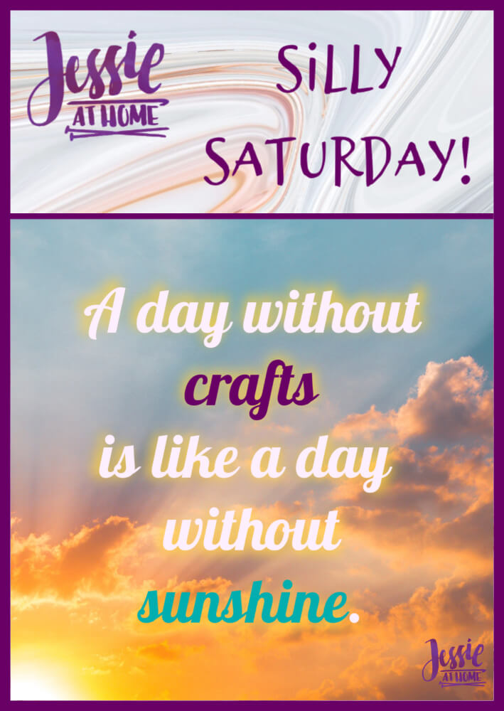Can't Miss A Day – Silly Saturday