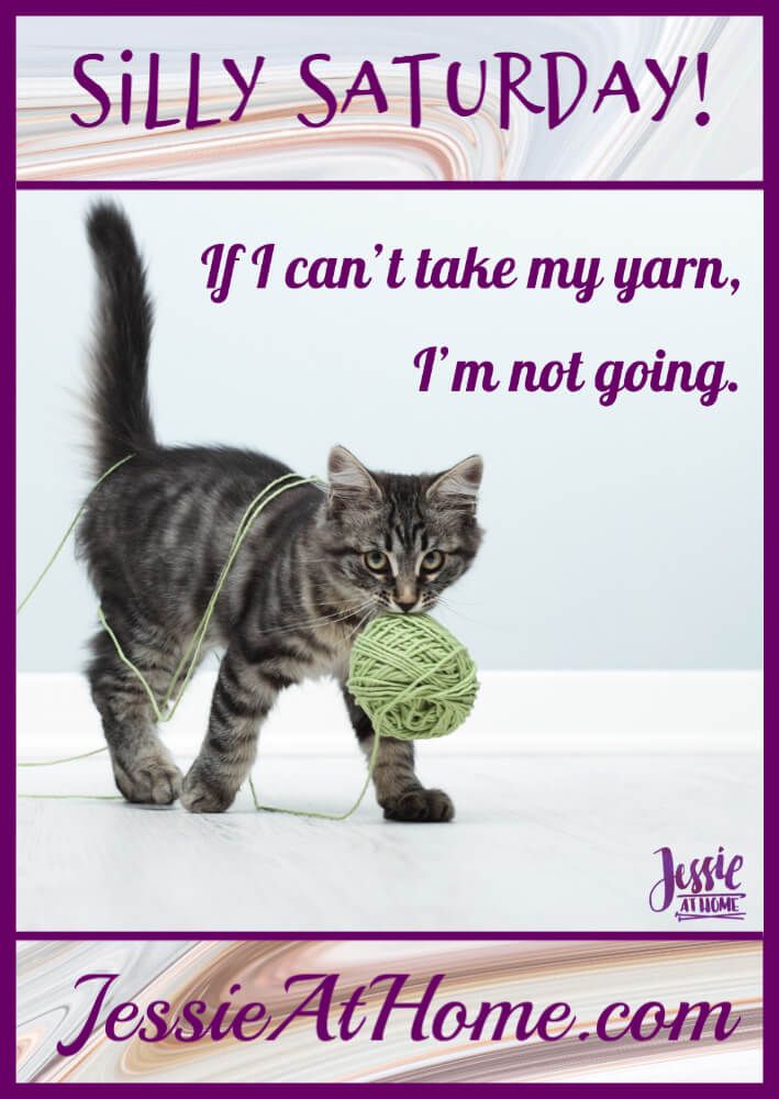 I\'m Taking My Yarn - Silly Saturday