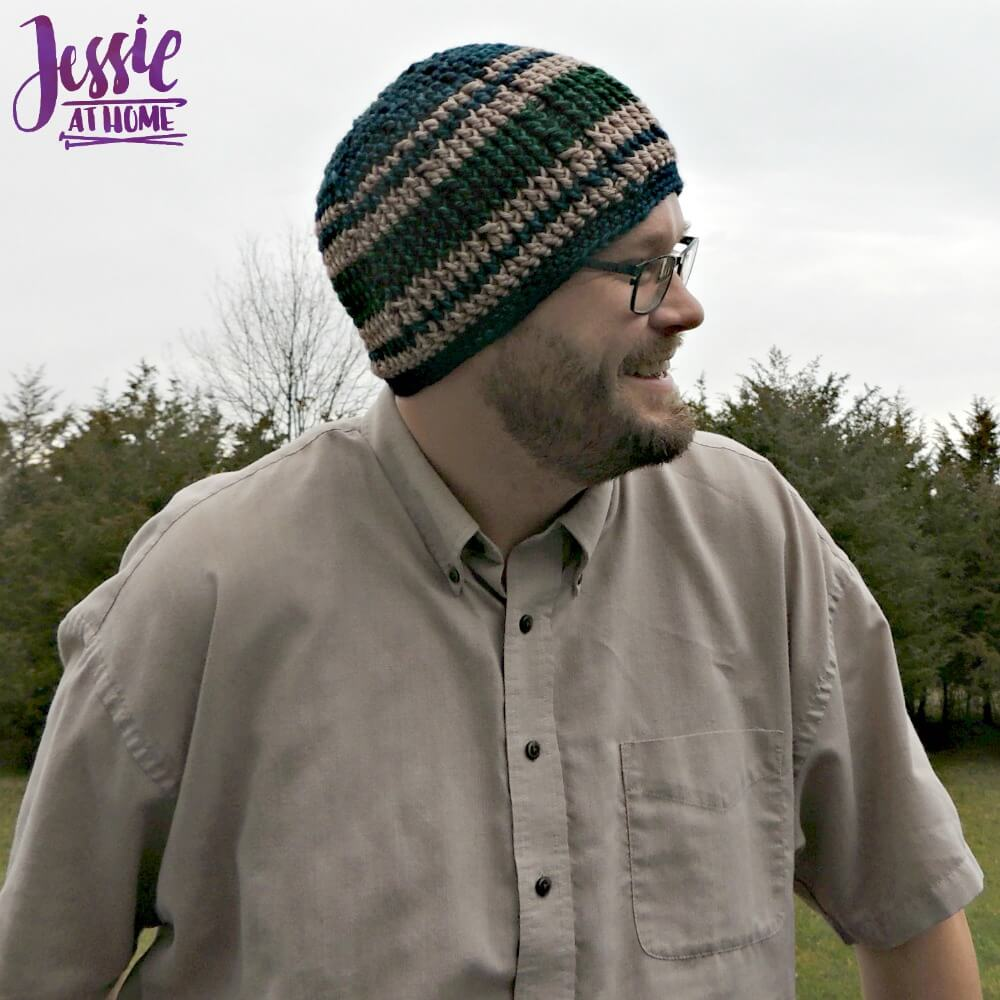 Vines & Twigs Beanie free crochet pattern by Jessie At Home - 2
