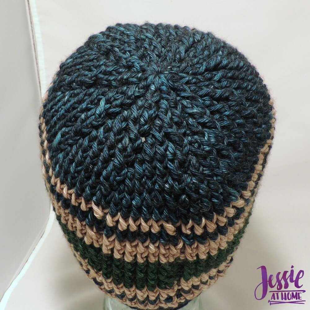 Vines & Twigs Beanie free crochet pattern by Jessie At Home - 3