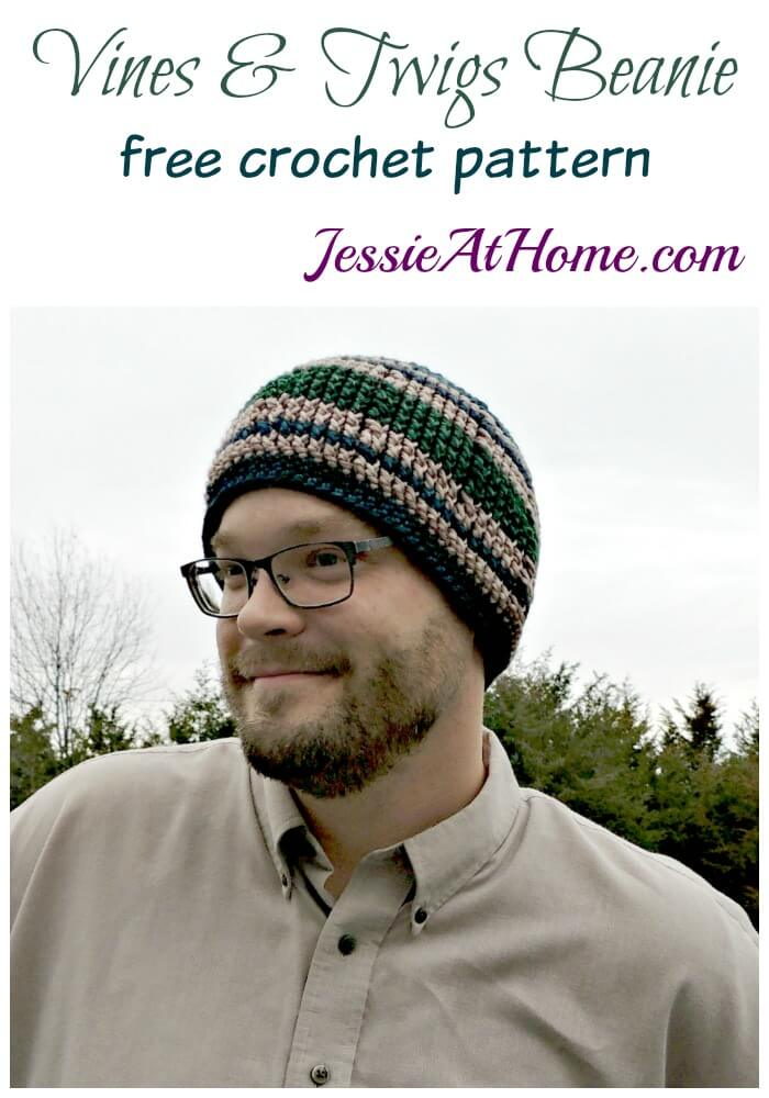 Vines & Twigs Beanie free crochet pattern by Jessie At Home