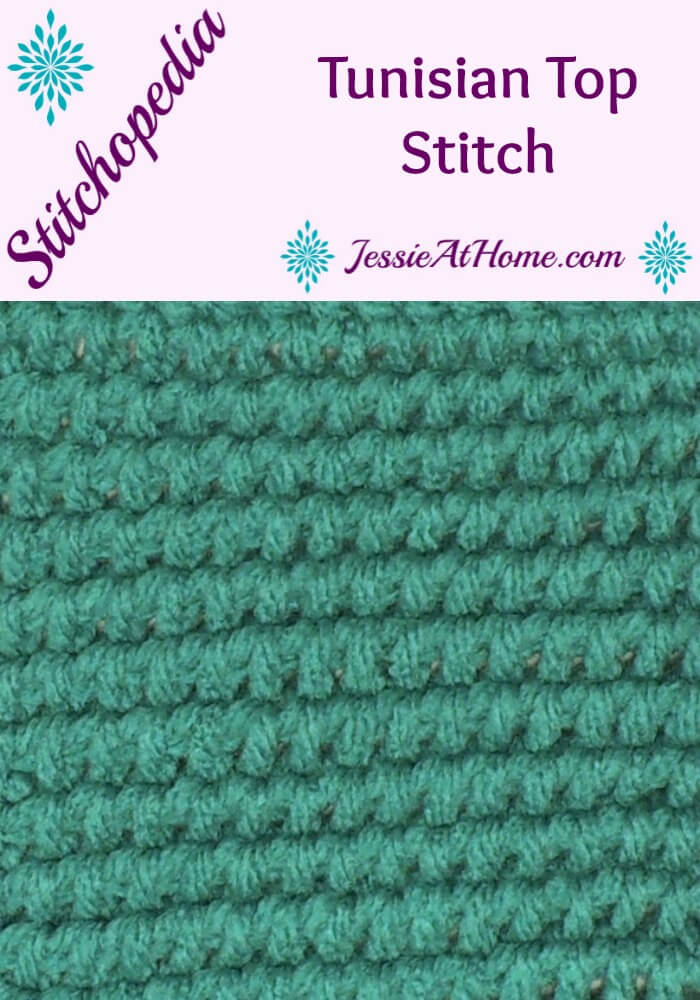 Stitchopedia - Tunisian Top Stitch
