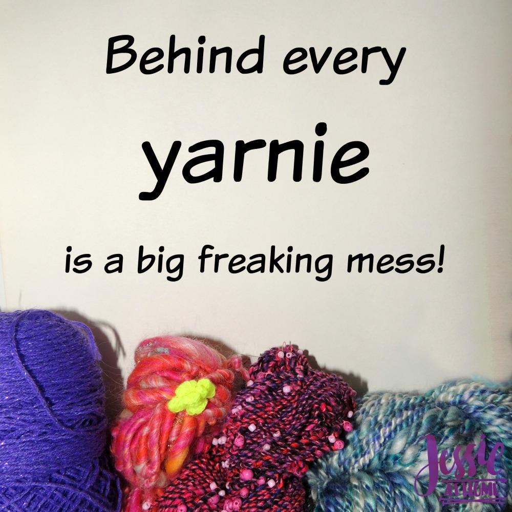 Silly Saturday 1/26/19 - Yarnie Mess