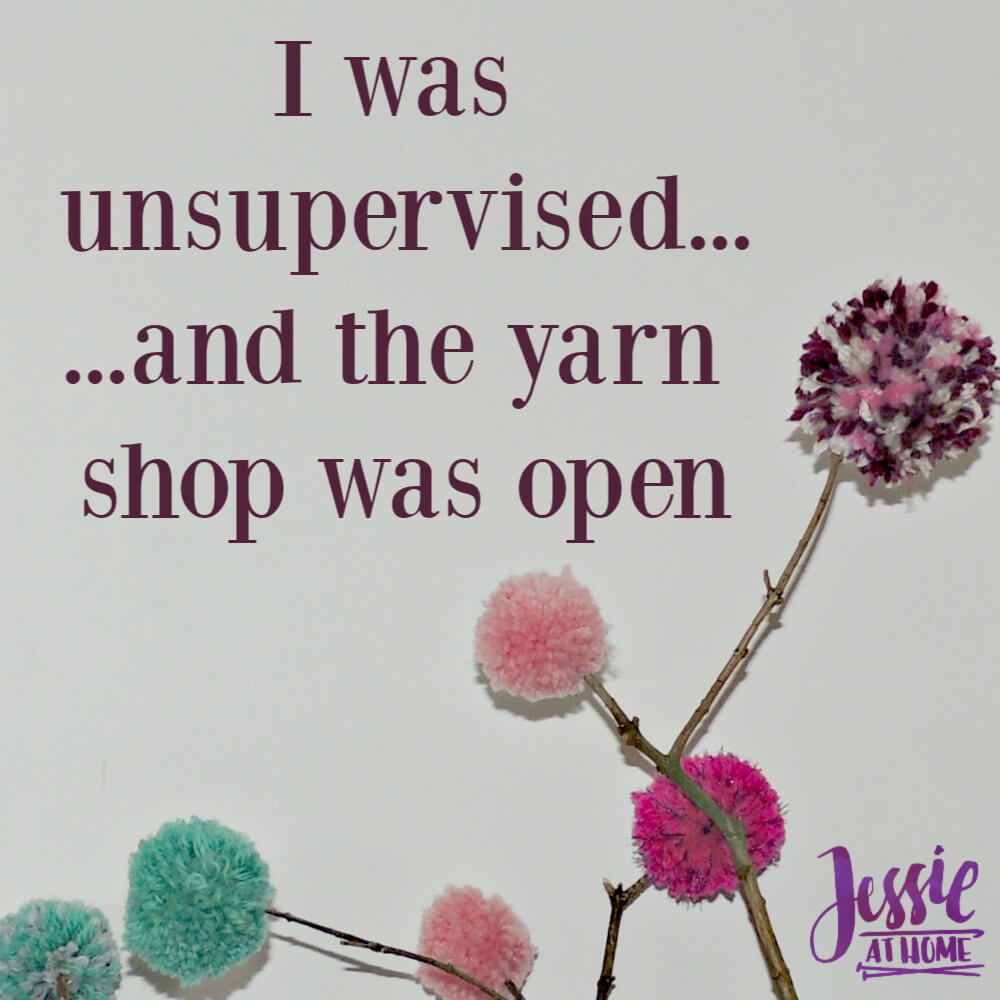 Silly Saturday 2/9/19 - unsupervised yarn shopping