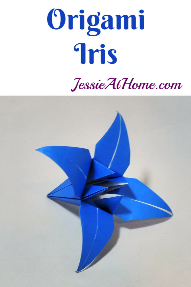 Origami Iris – A beautiful, dimensional flower that is sure to impress!