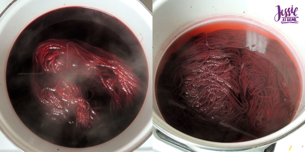 Dyeing Yarn with Jessie At Home - Protein Yarn and Acid Dye - Galileo - Fire Red Solid - Dyeing